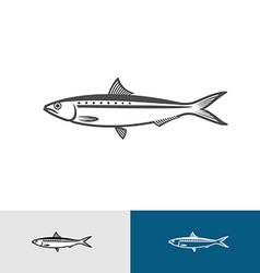 Sardine silhouette vector image