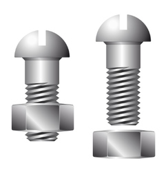 Screw with nut isolated on white background vector image vector image