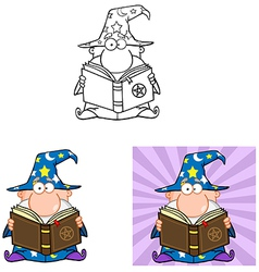 Funny Wizard Holding A Magic Book Collection vector image vector image