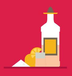 tequila bottle salt lemon flat vector image vector image