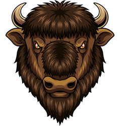 bison head mascot vector image