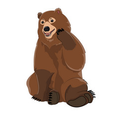 brown russian bear vector image