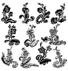 elegant flourish image vector image