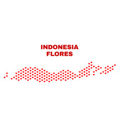 Flores islands of indonesia map - mosaic of vector