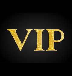 golden vip party premium card vector image