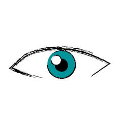 male eye view look vision image vector image
