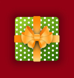 present for special occasion birthday or xmas vector image
