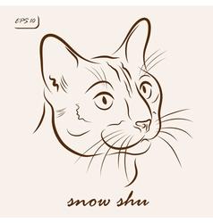 Snow shu cat vector
