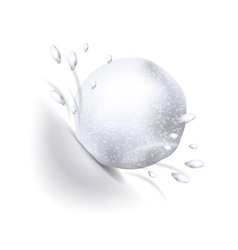Snowball isolated on white vector image