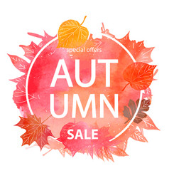 autumn leaf foliage watercolor vector image