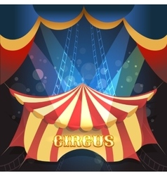 Circus Theme vector image vector image