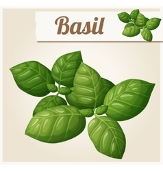 Basil leaves detailed icon vector