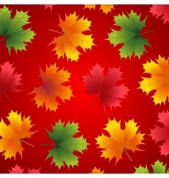 Beautiful autumn background with maple leaves vector image