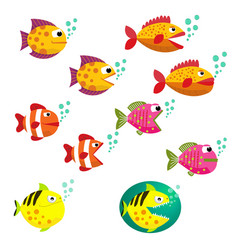 cartoon colorful sea fish collection set vector image