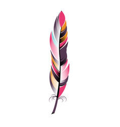 Colored narrow feather boho style vector