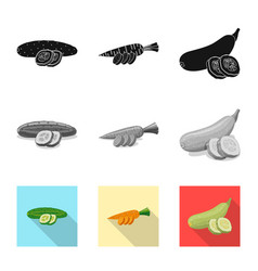 design of vegetable and fruit logo set of vector image