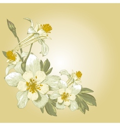 Floral design element with white blooming flowers vector
