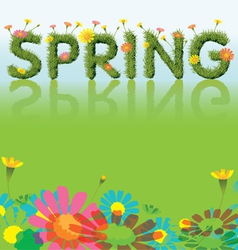 Flowers Spring Season Background with Grass Font vector image
