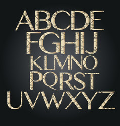 Golden alphabet letters separated alphabet vector