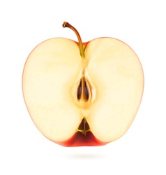 Half apple vector image