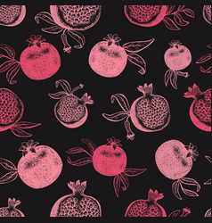 Pomegranate fruit seamless pattern hand drawn vector