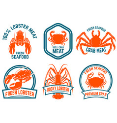 set of seafood lobster crab meat isolated on vector image
