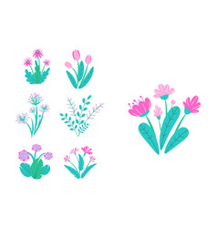 spring garden flowers simple plant bouquet vector image