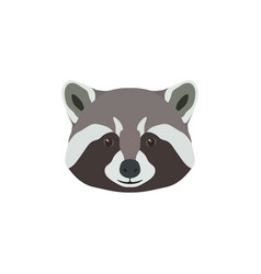 wild raccoon head animal mascot vector image