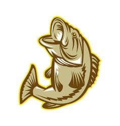 Largemouth bass fish vector