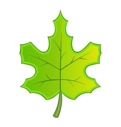 Green maple leave icon cartoon style vector image