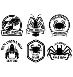 set of crab meat lobster meat label design vector image
