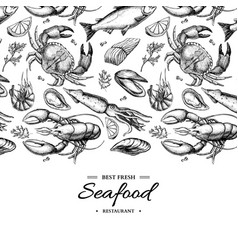 seafood hand drawn framed vector image vector image