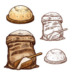 sketch icons of baking flour bag and bread vector image
