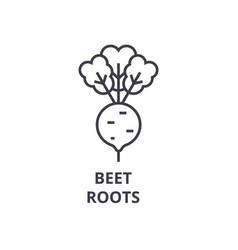 beet roots line icon outline sign linear symbol vector image