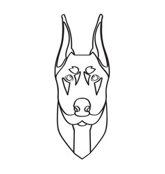 isolated doberman avatar vector image