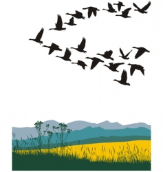 Migrating geese in the spring vector