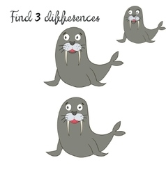 Find differences kids layout for game seal vector