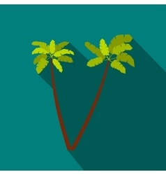 Two palm trees icon flat style vector image vector image