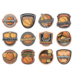 Basketball ball basket player and trophy icons vector