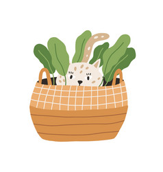 Cute and funny playful cat hiding in wicker basket vector