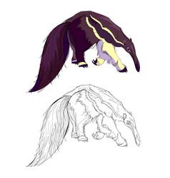 Fantasy cute fairyland anteater colorful vector