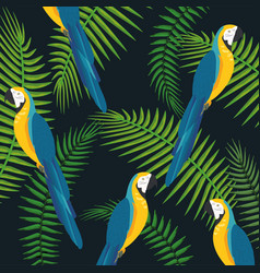 Macaws parrots with branches leaves background vector