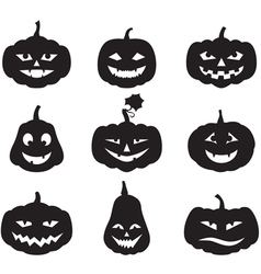 Pumpkin set vector