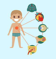 kid health poster with human body anatomy vector image