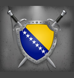 flag of bosnia and herzegovina the shield with vector image