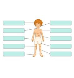 Parts body vector