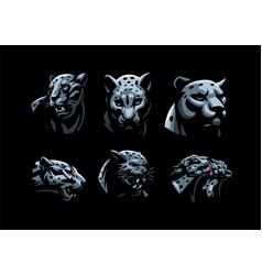 wild cats jaguar cheetah leopard panther vector image