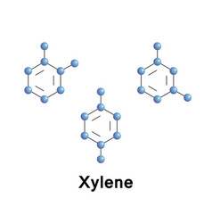 Xylenes are three isomers vector