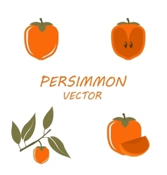 Persimmon icons set vector image