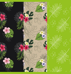 set of 3 seamless patterns with tropical designs vector image vector image